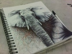 If I could draw I'd draw elephants