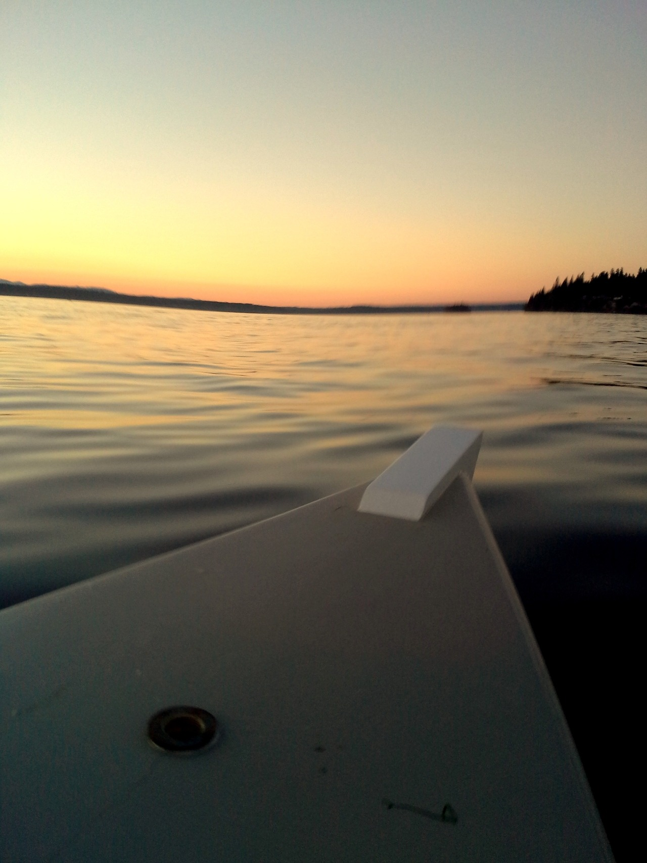 Don't really know how this blur happened… Carr Inlet summer sunset.