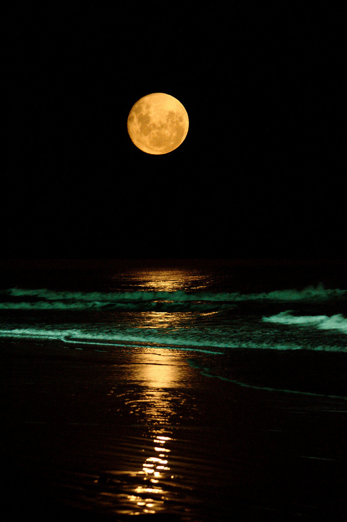 juicycouture:  Did you all catch that wild moon last night?