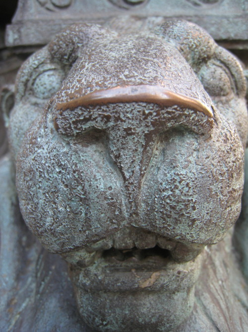 Frozen Faces    Photographs taken in Brooklyn Heights, New York City. ©…  View Post shared via WordPress.com