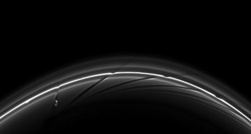 sklogw:  Prometheus Creating Saturn Ring Streamers  What's causing those strange dark streaks in the rings of Saturn? Prometheus. Specifically, an orbital dance involving Saturn's moon Prometheus keeps creating unusual light and dark streamers in the F-Ring of Saturn. Now Prometheus orbits Saturn just inside the thin F-ring, but ventures into its inner edge about every 15 hours. Prometheus' gravity then pulls the closest ring particles toward the 80-km moon. The result is not only a stream of bright ring particles but also a dark ribbon where ring particles used to be. Since Prometheus orbits faster than the ring particles, the icy moon pulls out a new streamer every pass. Above, several streamers or kinks are visible at once. The above photograph was taken in June by the robotic Cassini Spacecraft orbiting Saturn. The oblong moon Prometheus is visible on the far left.   Credit:  Cassini Imaging Team, ISS, JPL, ESA, NASA