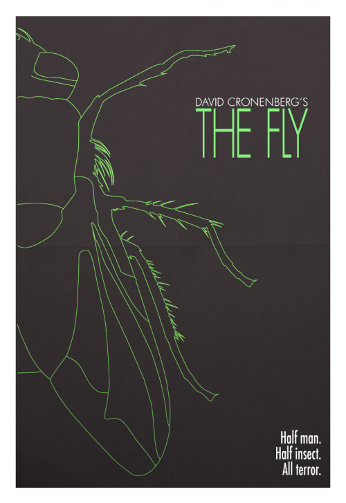 The Fly by Kayla Chalkley