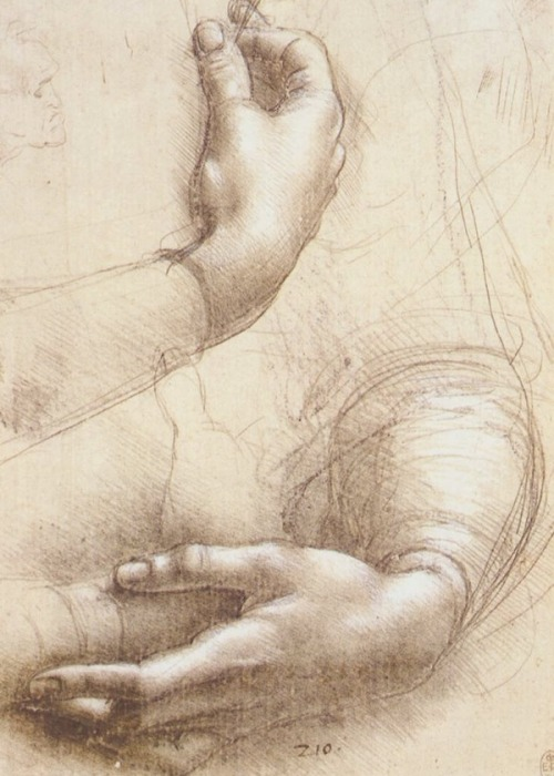 efedra:  Study of Hands, (circa 1474) by Leonardo da Vinci