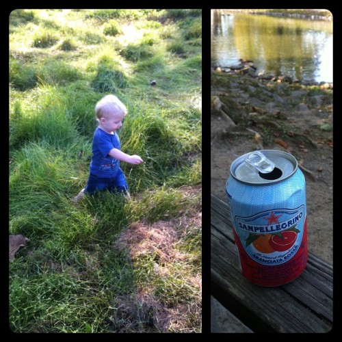 Got some wilderness exploring and soda sipping time in this morning with Oliver, good times! (Taken with Instagram at Shelby Park Duck Pond)