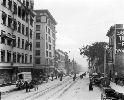 Circa 1903 view of Hill Street in downtown Los Angeles, looking south from Third. Part of the Title Insurance and Trust / C.C. Pierce Photography Collection in the USC Digital Library.