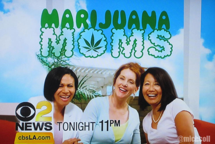 This is an actual story airing tonight on CBS in LA. I'll be tuning in, mainly thanks to this graphic. I wanna be friends with these moms! These… Marijuana Moms. Am sure their kids are THRILLED about this!!!