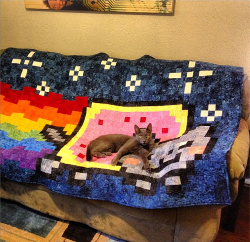 catasters:  Yes, I'm the Nyan Cat. No autographs, please…