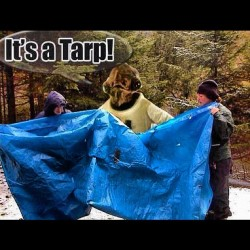 It's a tarp! #tarp #trap #itsatrap #starwars ##admiralakbar #meme #statigram #all_shots #transform #onedirection #bestoftheday #all_shots #iphonesia #igers #igdaily #igaddict #instagood #instamood #instagramhub #webstagram #lol (Taken with Instagram)