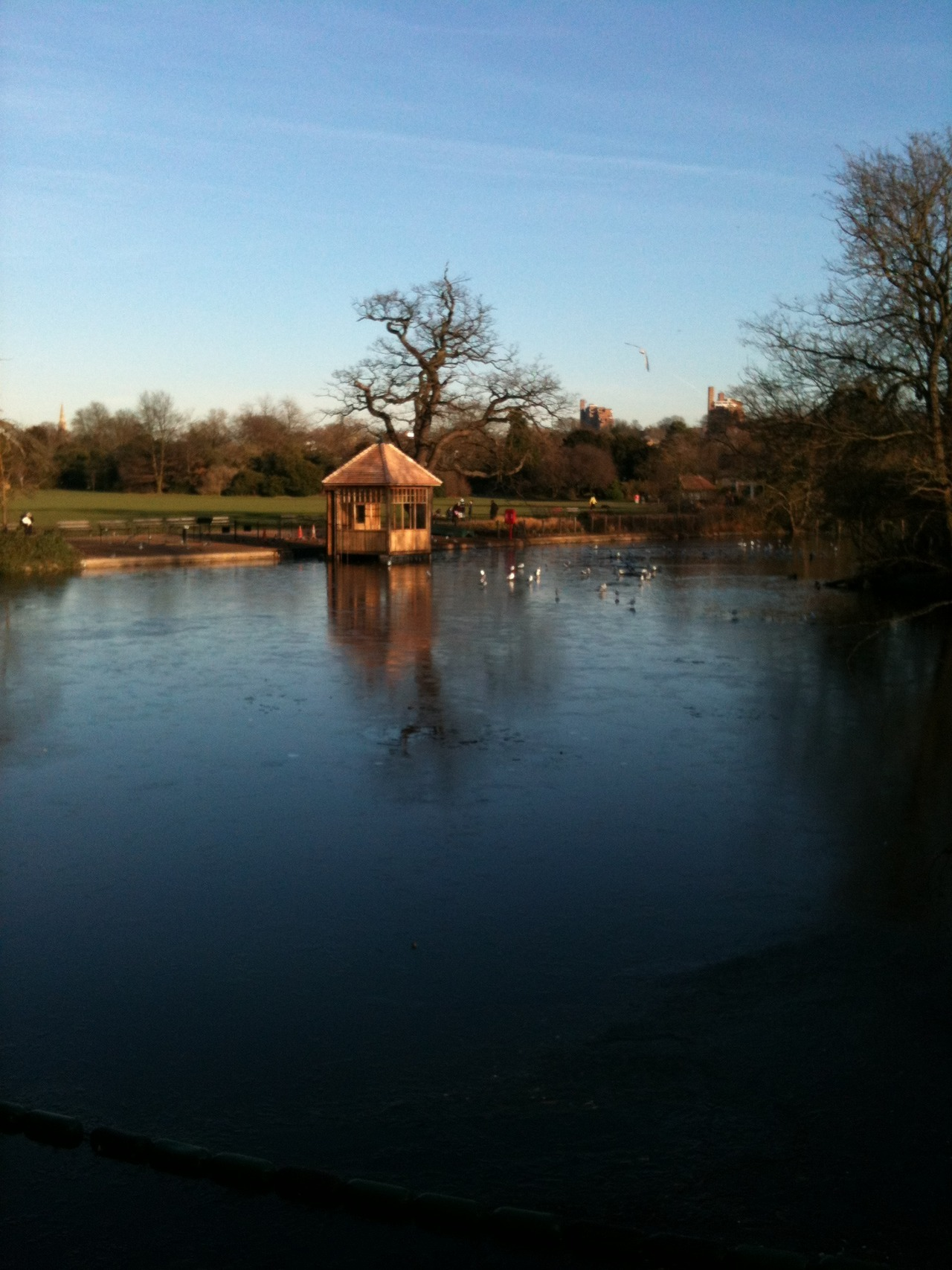 Dulwich Park on a January morning.