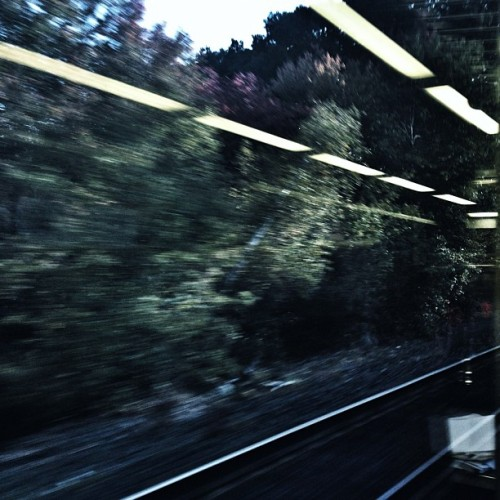 Early morning commuter rail window observations. #BAU  (Taken with Instagram)