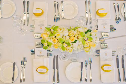 loveliest table setting ive seen in a long time. or maybe ever.  (photo by tara mcmullen)