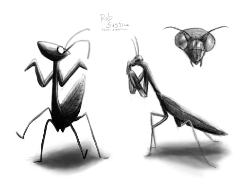 "Mantis stuff I did this morning in preparation for when the world is controlled by these, do I say, ""little buggers"".While you are all being cooked for their dinner tea parties, I will be the lowly artist who captures their movement."