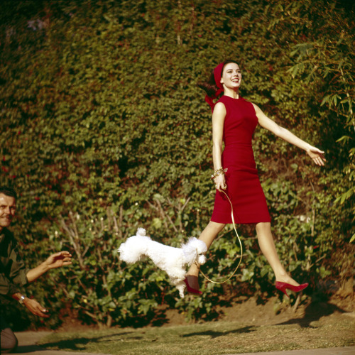 modcloth:  A smile-invoking shot of Natalie Wood in a vermillion dress.