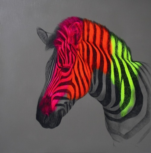 louisemcnaught:  'Wild wild horse', spray paint, pencil and acrylic on linen, 60x60x4cm (08/2012) by Louise McNaught