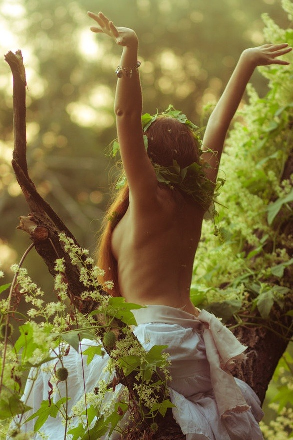 icomefromthemo0n:   We all need to go topless in the forest more often !!