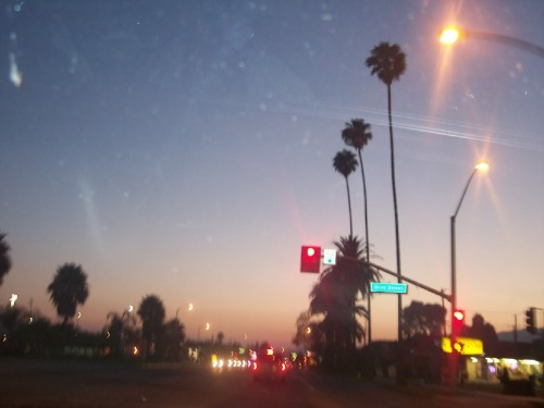 kodilane:  This was the first photo I took when I got to California sometime in 2010