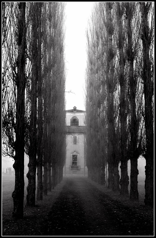I will not return in that house … By: Roberto Carnevali