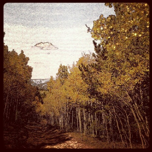 Oh man I discovered a new photo app! Haha #Aspens #instaCOlorado #DomeRock #fallcolor  (Taken with Instagram)