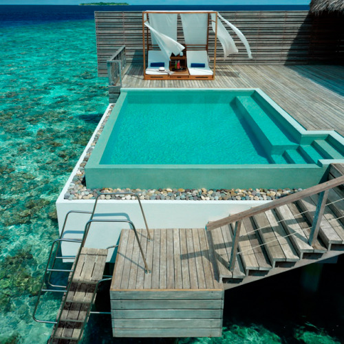 homedesigning:  Dusit Thani Resort @ Maldives  take me here.