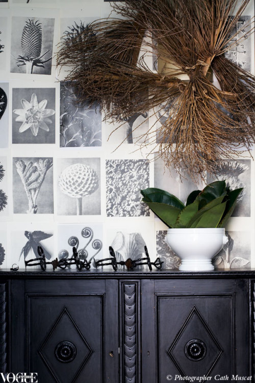 Mariella Ienna made her own wallpaper by pinning early 20th-century botanical prints to her wall, then laying real lush leaves and palm branches against them. From 'Wild Life', a story on page 142 of Vogue Living Jan/Feb 2010. Photograph by Prue Ruscoe.