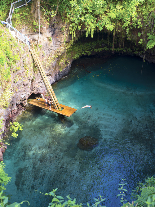 fuckyouverymuch:  We are dreaming of taking a dive here.