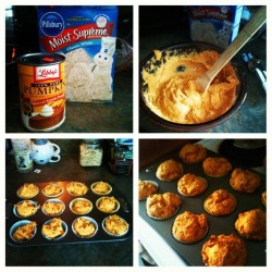 White cake mix and a can of pumpkin pie filing. Mix together (no eggs or water or oil needed!) scoop into a cupcake pan and back at 350 for 20-25 minutes. And bam! Your house smells like pumpkin amazingness and you get these super moist pumpkiny cupcake muffin things! (Taken with Instagram)