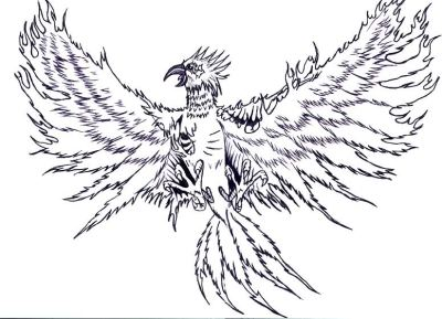 A tattoo I designed maybe 5 years ago. Something like that.