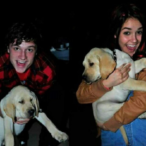 joshysploshy:  Okay, this is adorable. #Josh #Shanley #puppies #Detention (Taken with Instagram)