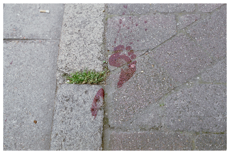 Bloody Footprint, Rochester.