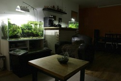 fuck-yeah-aquascaping:  What a living room (via Grégoire Wolinski)  What an aquascape living room!