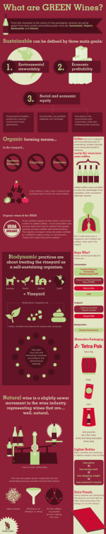 Infographic: There are plenty of buzzwords around sustainable wines, but what do they mean? We spell it out for you.