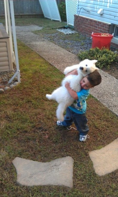 modernmethadone:  neofriend:  this is my son with the dog i just got him  aka me with all puppies ever