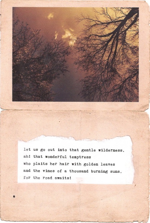 writingsforwinter:  let us go into that great wilderness by writingsforwinter