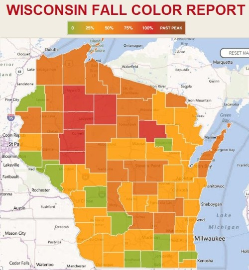Wisconsin Fall Color Report. Forecast for Madison: Orangeiest the first week of October.