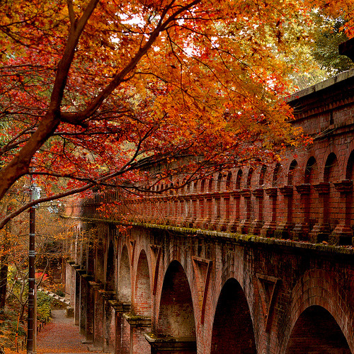 bluepueblo:  Autumn Arches, Japan photo via ribbons