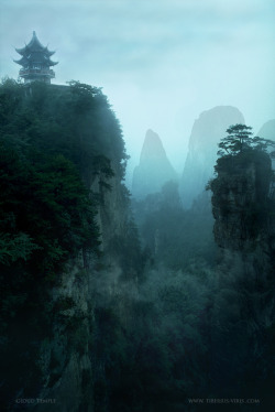"The Temple of Celestial Harmony. There is a legend of a monastery deep in the mountains of Nepal wherein dwell an order of monks which never see evil or ugliness.  Their monastery is in a sheltered vale and protected by mountain passes.  The monks come to the monastery as infants and never leave their entire life, everywhere around them is nothing but beauty, serenity and peace.  There is no sickness here. Death, when it comes, usually at an age of around 110 years or more, sometimes a great deal more, is treated as a joyous occasion and there is no mourning. They raise their own crops and make a soothing drink called ""tansgoma"". It is said to allow men to dream while waking.  They are said to be capable of shape shifting, often into birds, to travel to the heavenly realm at will and to see long distances while in meditation. They never leave but travelers in the summer of 1922 claimed they have an uncanny knowledge of the outside world including, so the village elders told them, knowledge of the then recent World War in Europe. The people in the surrounding village are not permitted to enter the sanctuary but trade spices and other goods from a basket which is lowered from the walls at sunrise and again at sunset.  Here, there is no greed, no lust, no envy. All belongs to all. There is no hierarchy all are equal. Marco Polo heard of the Temple and these legends came down to us as the legend of Prester John and the lost city of Shangri-la  Four times in a thousand years enemies, each in their turn, have made their way to the walled monastery. The Mongols, the Rajputs, the Mughals and the Chinese.  Each lured by tales of golden idols, with eyes of ruby each the size of a melon. Each army was devastated, destroyed almost to the man by a raging plague which was borne upon the very air they breathed but which the monks and surrounding villagers are immune. No Westerner has ever so much as touched the sacred walls of the temple compound. It is told that the great Alexander himself made it to the first pass but turned back when he discovered the bloated and blackened bodies of his advance force.  He went no further east in his conquests, his men threatening to mutiny, these battle hardened veterans had seen something in that valley which frightened them more than all the Armies of the east, and after turning westward back toward Macedon, Alexander was himself dead within the year. Near the opening of this pass lies the broken form of a 1970s era Russian jet fighter. The bodies of its two pilots still rotting in their harness. No effort has ever been made to recover their bodies. The Nepalese Army now guards the pass.  They deny the existence of the temple and will shoot any person regardless of nationality who tries to enter.  In 1992 a Japanese film crew consisting of expert mountaineers with modern gear, including oxygen and satellite communications, attempted to avoid the guarded pass by going over the mountain to the west of the temple. They were ""lost"" in the mountains no trace having ever been found. It is said that the monks are waiting for something, but nobody knows why they wait.  Very little has come out of the valley since the 1920s. The mystery only deepens with each passing year."