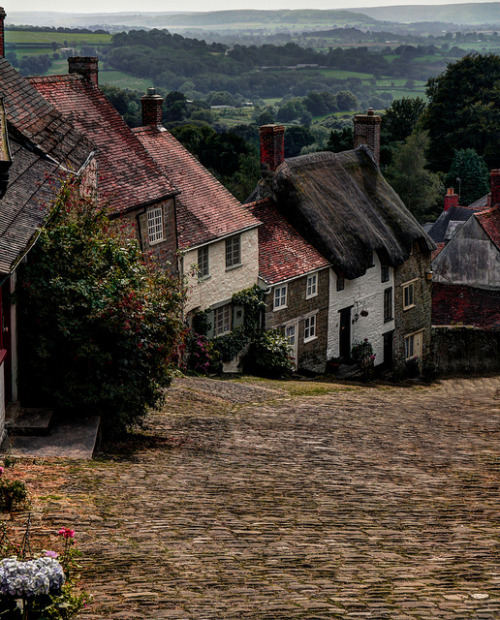 visitheworld:  Gold Hill in Shaftesbury, Dorset, England (by views of the world).  Davey, baby, can we go here? xx