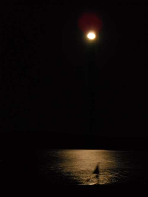 The Full Moon over the lake @ Boom Festival, was such an amazing sight to take in. The light show visuals from the moon onto the lake ~ ripples dancing ~ to psychedelic sounds was soooo beautiful !Ill never forget this moment .