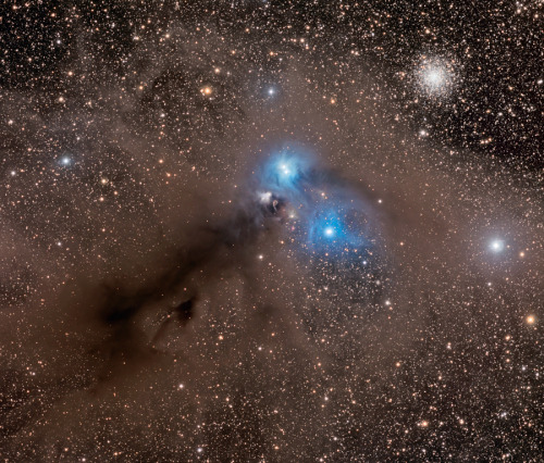 "(via APOD: 2012 September 27 - Stars and Dust Across Corona Australis) Stars and Dust Across Corona Australis Image Credit & Copyright: Marco Lorenzi (Glittering Lights) Corona Australis is the Southern Crown. (Here in the northern hemisphere, we have Bootes holding Corona Borealis in the night sky. Bootes, the herdsman, is the constellation that Arcturus is in. Remember ""arc to Arcturus and spike to Spica"". Spica is in Virgo.) In any case, there's a crown in the skies of the southern hemisphere too, and that's where you can see this interesting collection of dust, along with a globular cluster…at least in the same line of sight. The blue light you see in the nebulae is from the stars embedded in the dust, and is being reflected back toward us. Blue light scatters more readily in the dust of the interstellar medium, so more blue than red is being bounced off the ""grains"" (think something the size of soot) back at us. The dark areas are where the dust is so thick between our point of view and the star field that we can't see through it in visible wavelengths. An infrared image would see through it, and into it, to see what's going on. The cloud of dust creating this nebular complex is about 500 light-years away, but the globular cluster in the upper left of the image, while appearing close, is actually about 30,000 light-years away, far beyond the dust and stars of the nebulae. They're very old, gravitationally bound collections of stars that orbit the galaxy, but not necessarily in the galactic plane. This one is NGC 6729."