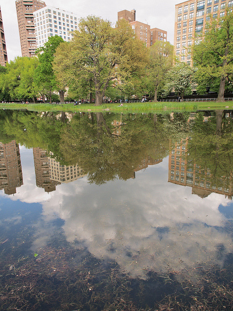 Harlem Meer by Ed Gaillard on Flickr.