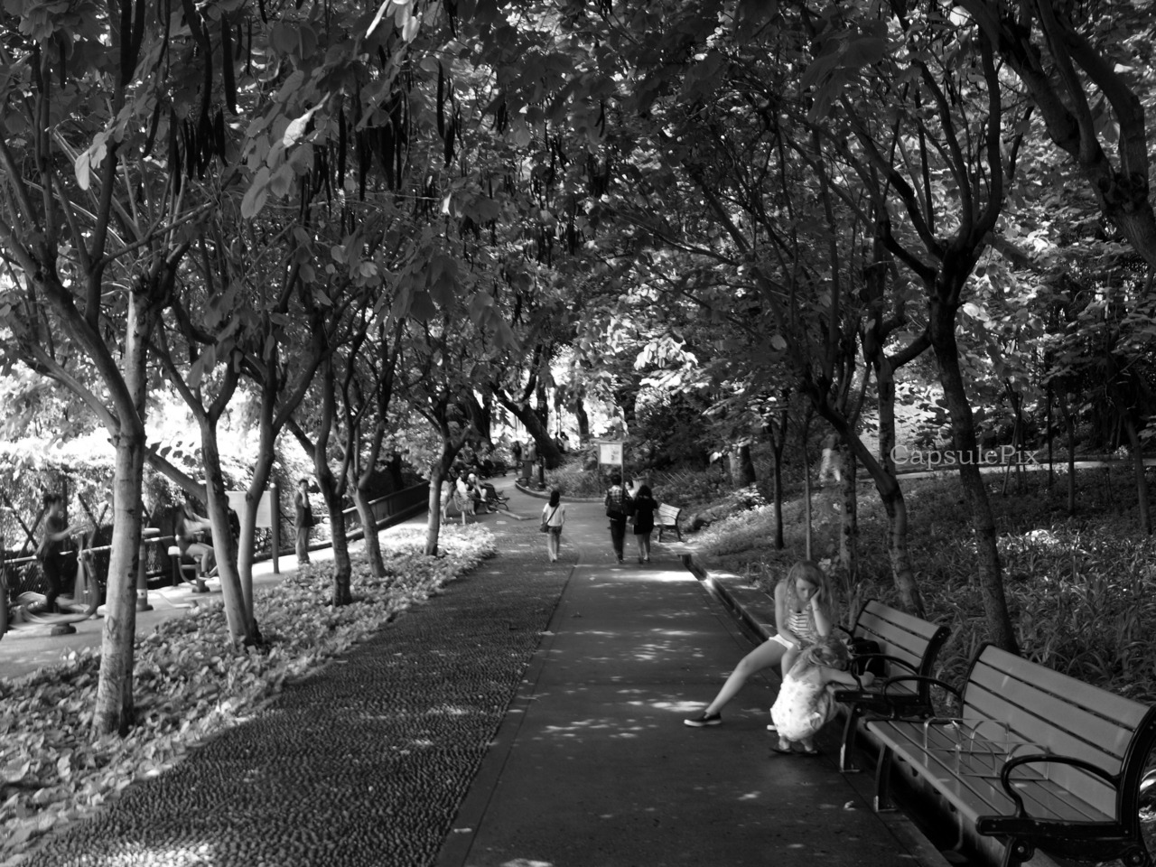 People in the park..@Mount Fortress Garden, Macau