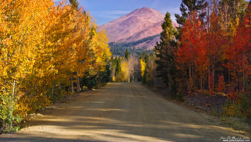 landscapelifescape:  Boreas Pass, Colorado, USA Country Road Of Color by kkart