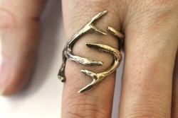 whiskeyandwhitetails:  My room mate found the link to that ring!!!!