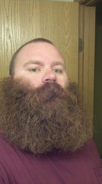 beardsftw:  Follow BeardsFTW!