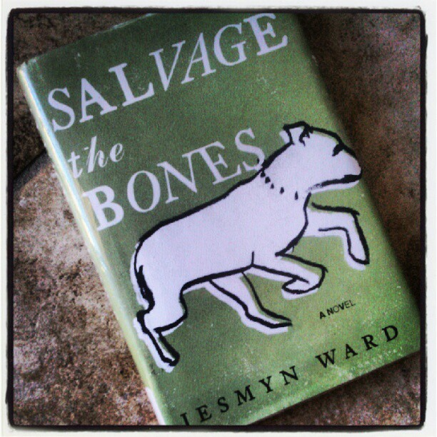 #32 favorite novel so far this year. 2011 National Book Award recipient for fiction. Based in Mississippi, in the midst of preparing for Hurricane Katrina, an impoverished 14 yr old girl finds out she is pregnant. The story follows her, her 3 brothers, and her drunkard father twelve days leading up to Hurricane Katrina. Definitely adding Jesmyn Ward to my list of favorite authors (Taken with Instagram)