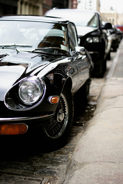 tynandebold:  i saw a jaguar in soho.