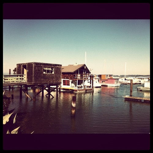 #houseboats (Taken with Instagram at Point San Pablo Yacht Harbor)