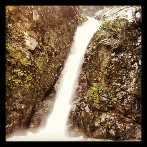 While hiking today we saw this! 😍 #waterfall #nature #santajacuzzi #jarabacoa #hiking @toshi_fukunaga  (Taken with Instagram)