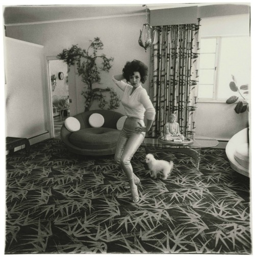 steroge:  Blaze Starr in her living room, Baltimore, Md., 1964 by Diane Arbus