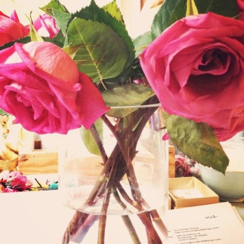 Shabby roses (Taken with Instagram)